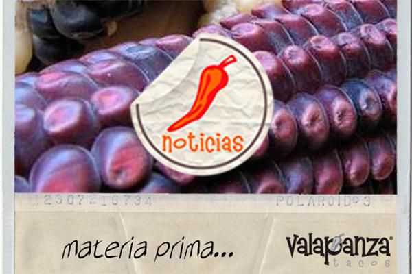 blog valapanza